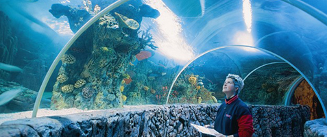Aquaria-onderwaterwereld
